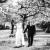 Hochzeitsfotograf_schloss_heinsheim_0651