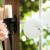 Hochzeitsfotos_Schloss_Eberstein_0186