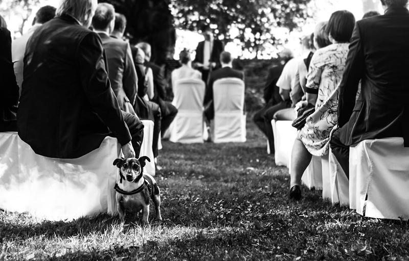 Hochzeitsreportage_Schloss_Heinsheim_0057